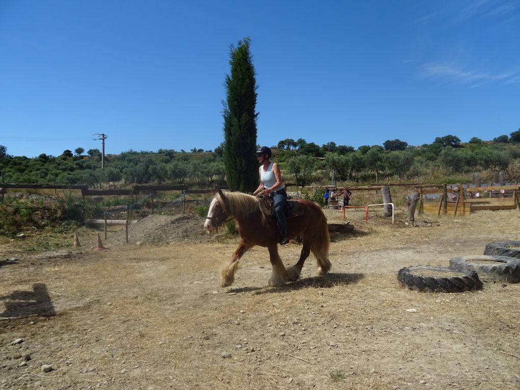 2020-06-Ranch Hidalgo