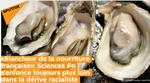 «Blancheur de la nourriture française»: Sciences Po s'enfonce toujours plus loin dans la dérive racialiste