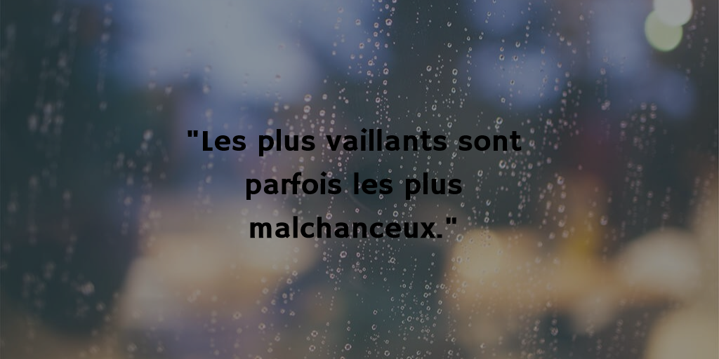 Montaigne par Lise - Vaillants