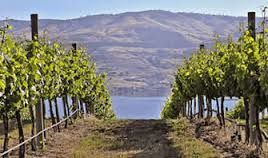 Viticulture in the state of Washington
