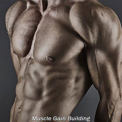 How to gain muscle protein shakes