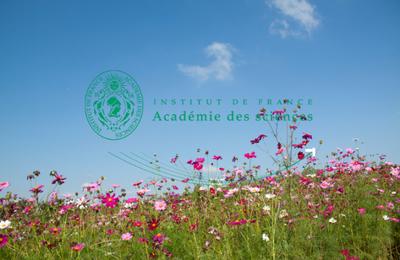 """Lauréats du prix de l'Académie des Sciences """" CNES Astrophysique & Sciences Spatiales"""""""