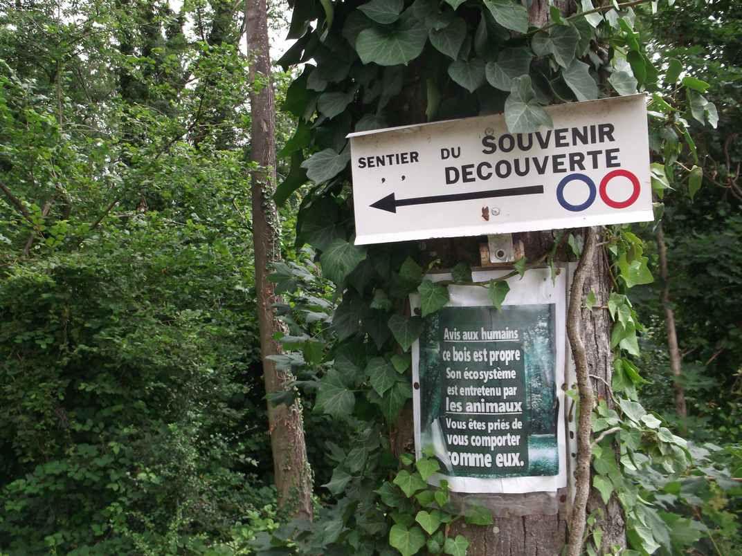 ISSENHEIM : CIRCUIT DE DÉCOUVERTE - 6 km - D+ 35 m - 2 h - 1/6