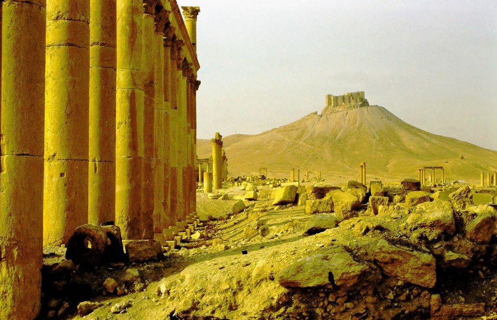 Au nord-est de Damas, Palmyre a été construit autour d'une oasis mentionnée déjà dans l'Ancien Testament. A l'est, s'étend l'immensité des steppes désertiques... par où passaient les caravanes de chameaux reliant le monde romain au monde perse et par où sont arrivés en mai 2015 les djihadistes. Après avoir été chassés, ils sont revenus en décembre 2016. Finalement, ils ont été de nouveau délogés en mars 2017. Ces photos seraient banalement touristiques, si les djihadistes de Daech - en même temps qu'ils décapitaient publiquement le conservateur du site, âgé de 82 ans ainsi que plusieurs membres de son équipe et des habitants -  n'avaient pas entrepris de faire exploser les vestiges du site romain. Ces photos datant de début 2002 témoignent donc de l'état du site avant le passage destructeur de Daech. Par exemple, l'Arc monumental ( dia 2  ) a été dynamité, comme le temple de Bêl ( dia 3 et en bas  à gauche dia  4 ); heureusement, le théâtre romain  ( dia 3  ) a, lui , été préservé.