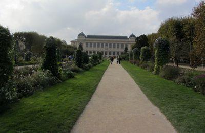 Muséum National histoire naturelle - 5eme
