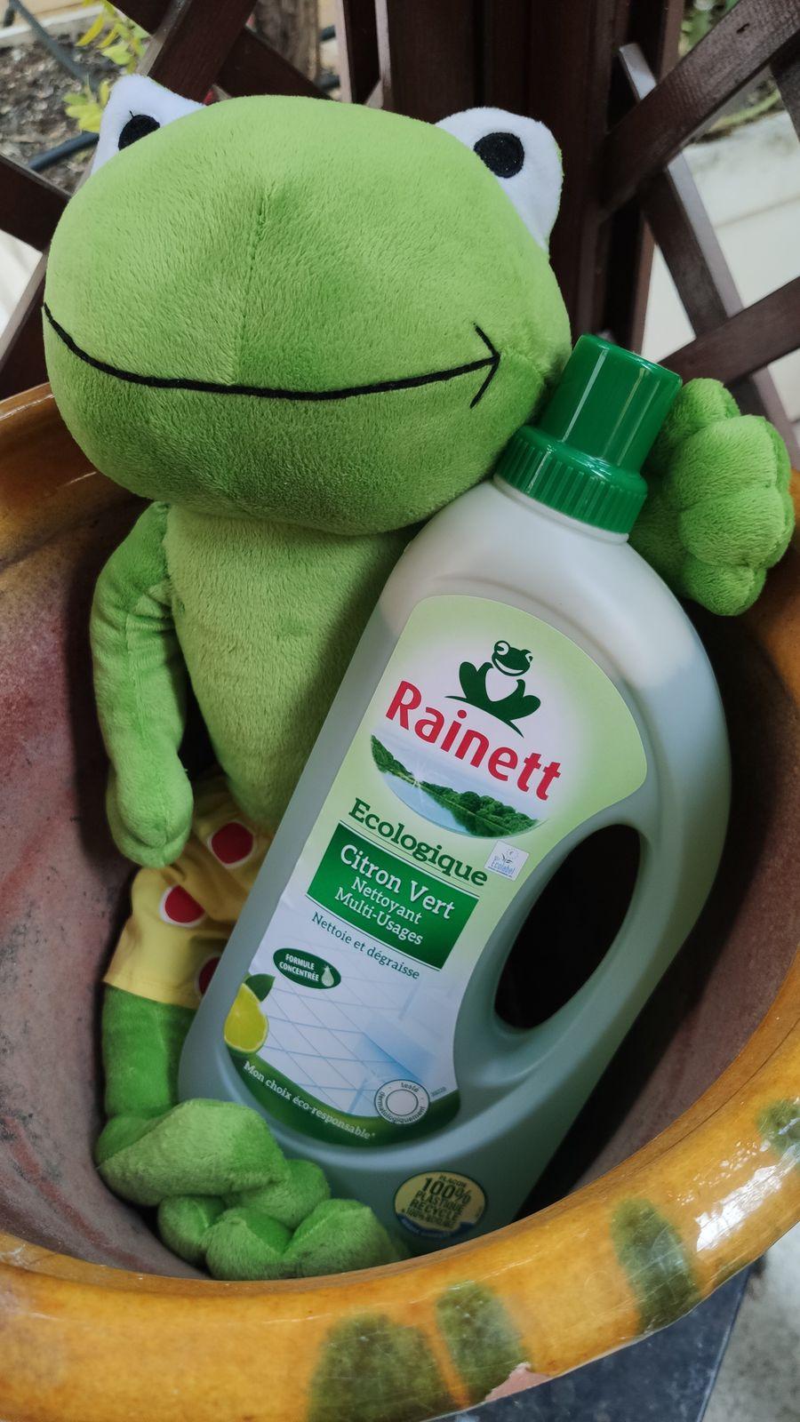 Shooting photos avec la petite grenouille ( Rainett) écolo
