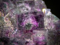 Fluorite with Phantoms and Angel Wings Calcite from Fujian mine, China (size: Cabinet)