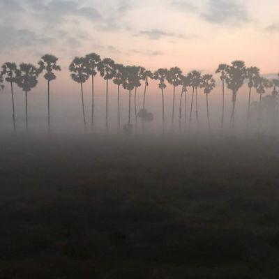 Birmanie : la frontière, Dawei et le voyage dans un train pas comme les autres