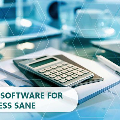 Accounting Software for Business Sane