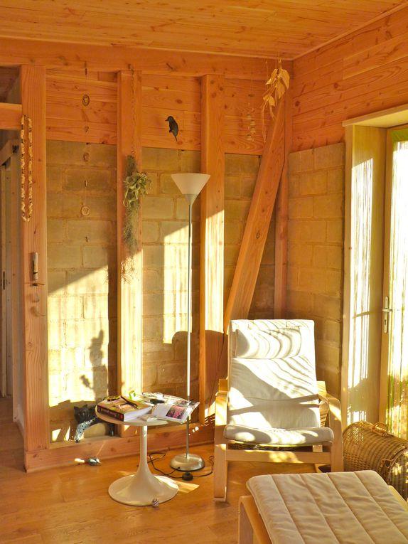briques de terre compressée et parquet en chêne, lambris et colombage en douglas