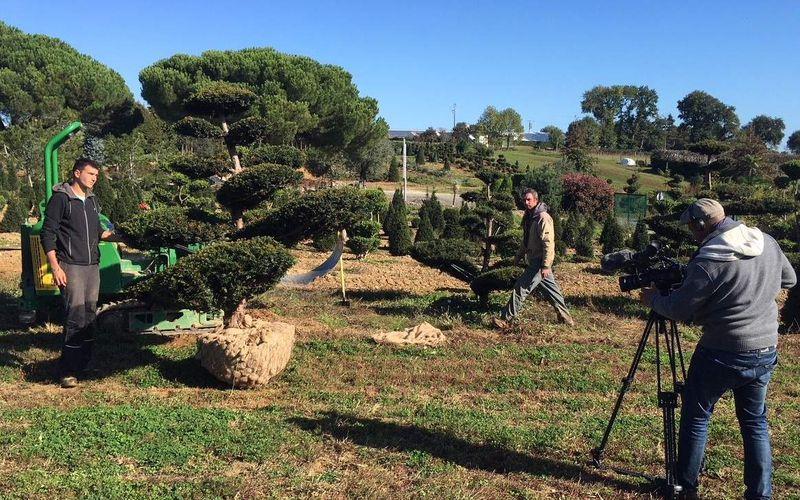 L'émission 'Comme une envie de jardins' ce dimanche à la pépinière Ripaud.