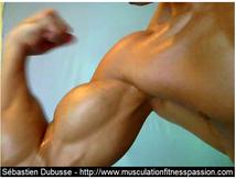 Les bienfaits des œufs sur notre santé, pour Sébastien Dubusse, blog Musculation/Fitness Passion