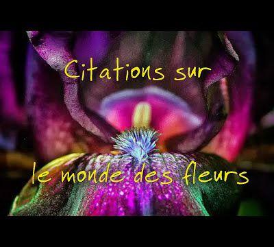 Citations sur les fleurs