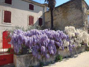 Sur les hauteurs du village : elles offrent une vue panoramique avec le jardin du château en contre-bas.