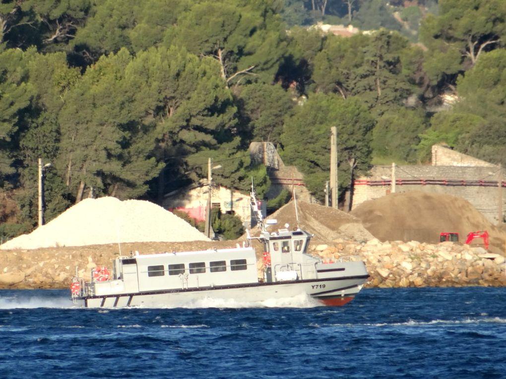 DRYADE  , Y719 , vedette de liaison (VLI) en petite rade de Toulon le 11 septembre 2017