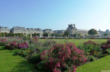 Paris, flânerie au jardin des Tuileries