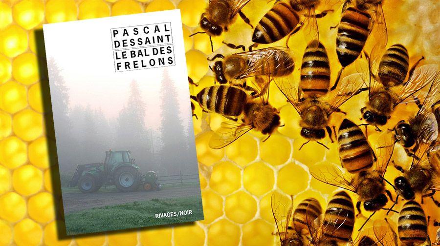 PASCAL DESSAINT - LE BAL DES FRELONS (2011)