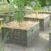 Tous les mercredis des vacances d'été, venez prendre des cours de jardinage au Centre Nature ! - Le Blog de l'Association du Centre Nature de Colombes