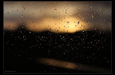 La pluie d'hiver..