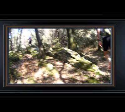 Trail aux étoiles 2013