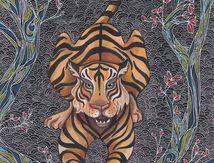 Tigres du Bengal