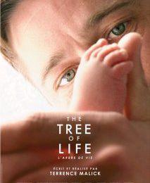 Film : The Tree of life