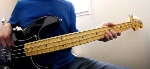 Eminem - Lose Yourself (Bass Cover)