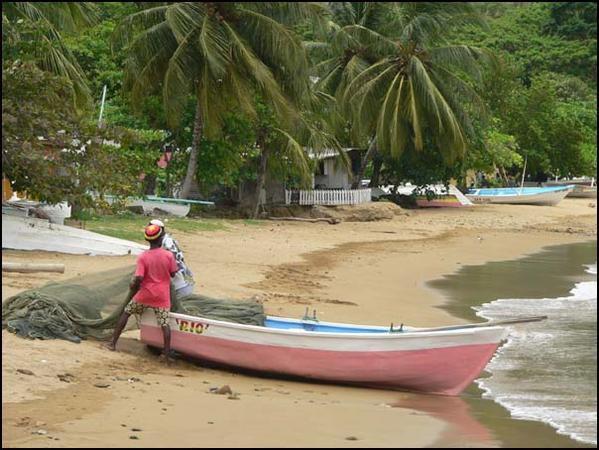 Photos d'une croisière du coté des Caraïbes, de Guyane jusqu'en Martinique (et retour).