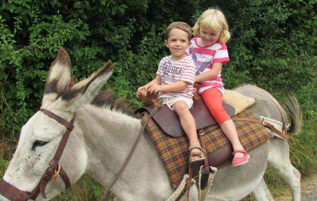 Balade sur un âne dans la campagne Clunysoise - 19 juillet 2013