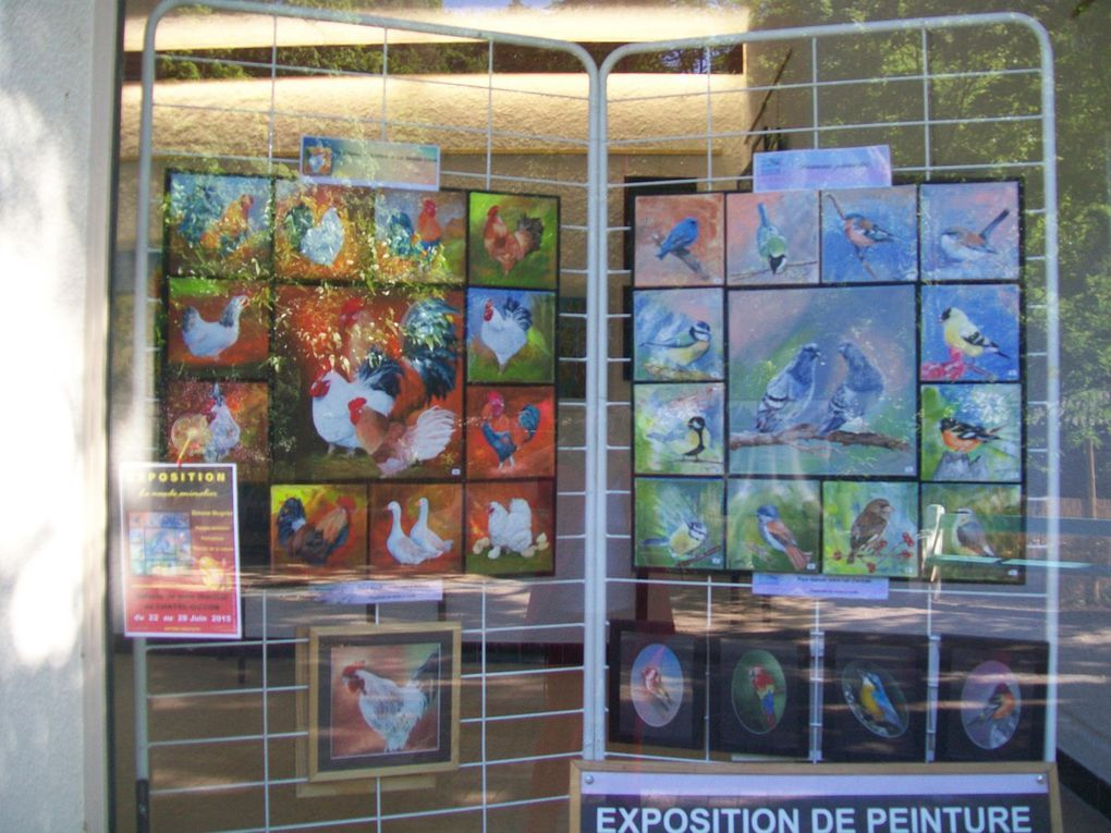 Exposition CHATEL GUYON 2015