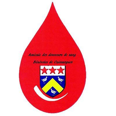 Collecte de Sang à Caissargues