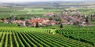 Champagne Producers Dept of Aube France