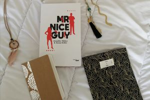 MR NICE GUY de Jennifer MILLER & Jason FEIFER
