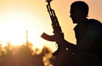 Syrie : 450 Français liés à l'Etat islamique sont détenus par les Kurdes (Le Parisien)