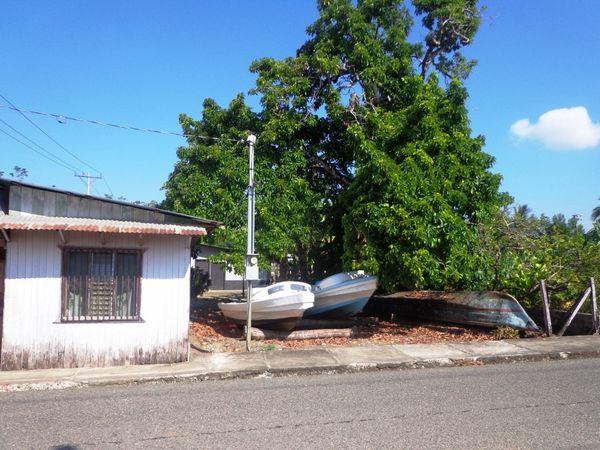 Costa Rica - Jour 13 :  Sierpe de Osa