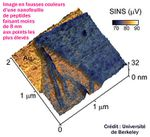 Un nanoscope pour observer le monde nano