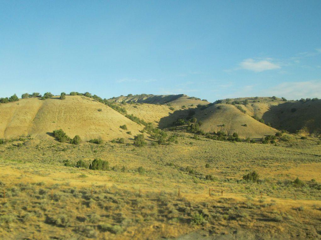 Voyage en Amérique..... De Cody à Custer.