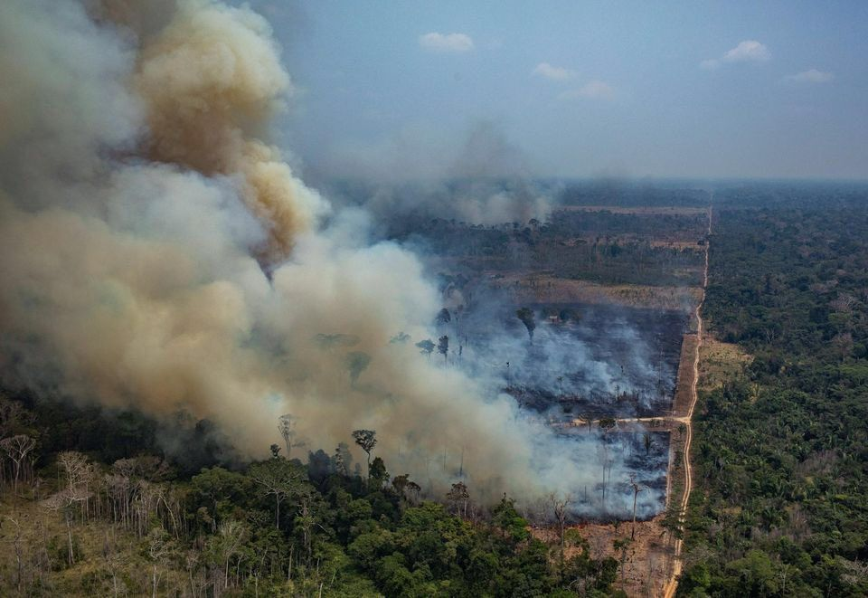 La déforestation en Amazonie brésilienne toujours plus folle
