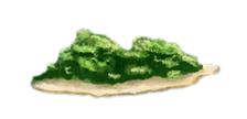 îlot...