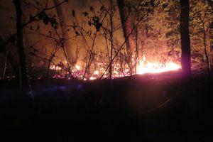 Encore un feu de broussailles