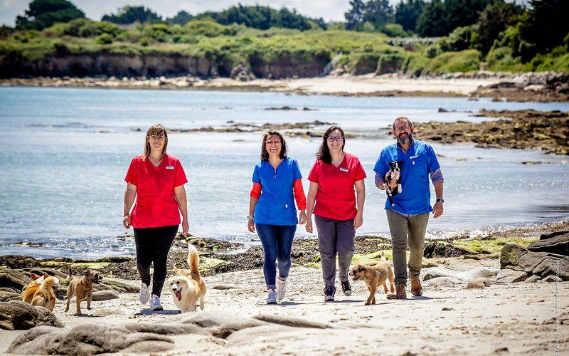 14 juin - Séance Corporate avec la clinique vétérinaire de Quiberon