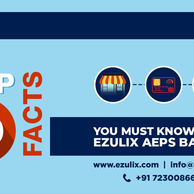 Facts, Services and Objectives of AEPS Software