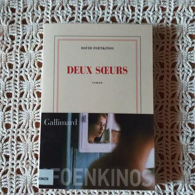 Deux sœurs de David Foenkinos