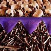 Rwanda, histoire d'une manipulation