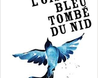 #133 L'oiseau bleu tombé du nid by Lily Hétet-Escalard