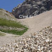 Séjour dans les Hautes Alpes - photos-botanique-nature.over-blog.com