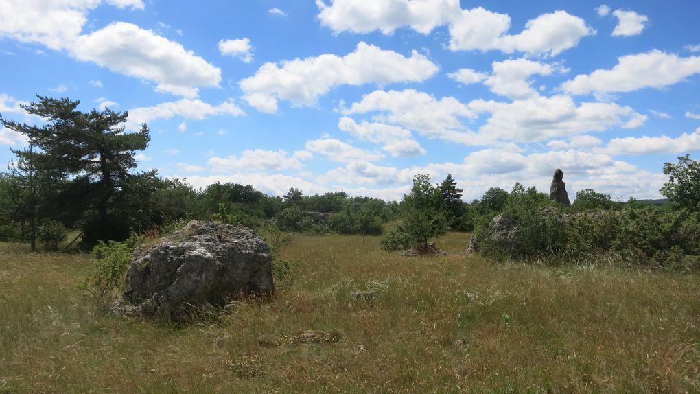 Du Haut Languedoc aux Gorges du Tarn via le Larzac