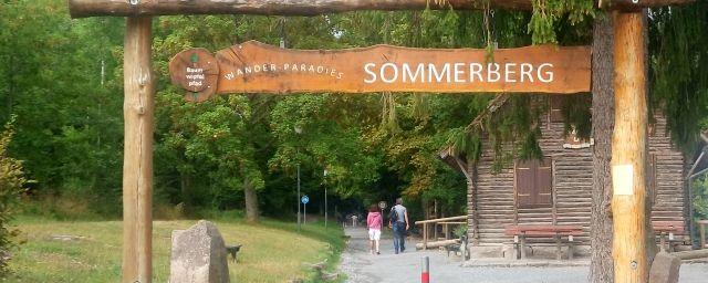 Baumwipfelpfad Schwarzwald - Il sentiero delle cime degli alberi nella foresta nera - Bad Wildbad (Germany)