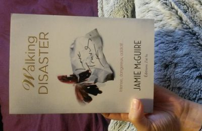Beautiful Disaster, tome 2 : Walking Disaster