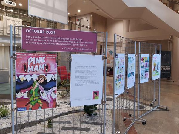 Octobre-rose-une-bande-dessinee-made-in-Colomiers